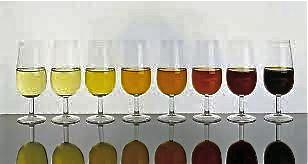 Los vinos generosos de Andalucía