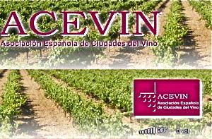 acevin-300x197