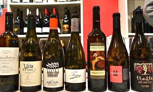 Los diferentes vinos de la cata